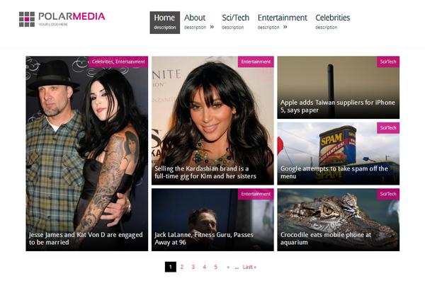 Polar Media Magazine WordPres Theme