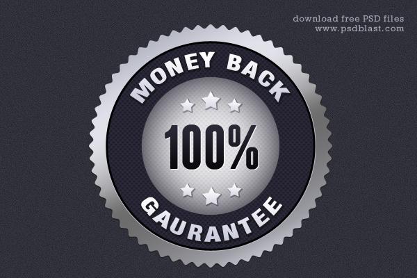 Silver Money Back Guarantee Seal