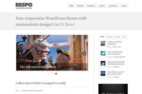 Respo clean responsive theme