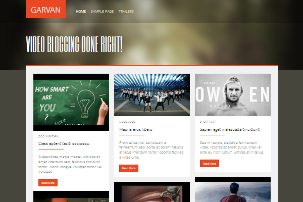 Garvan - an exclusive video blogging theme