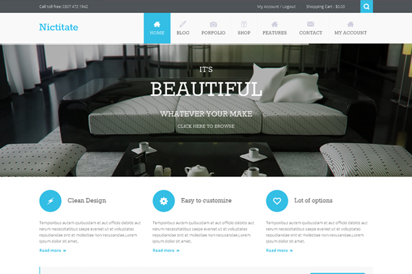 Nictitate – Multi Purpose WordPress theme