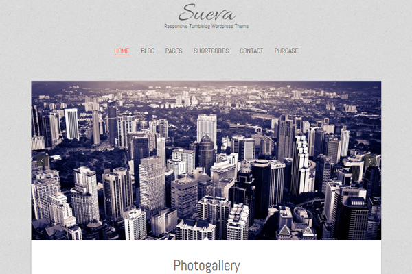 Sueva Free WordPress theme