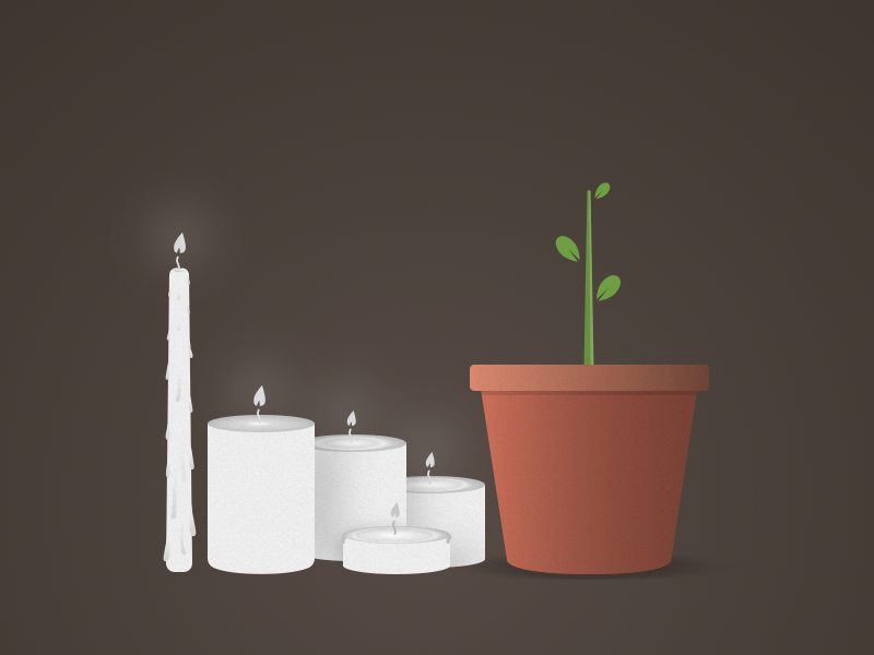 Free Candles & Plant Illustration (Sketch)