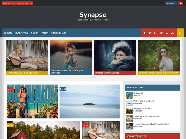synapse-wp-theme
